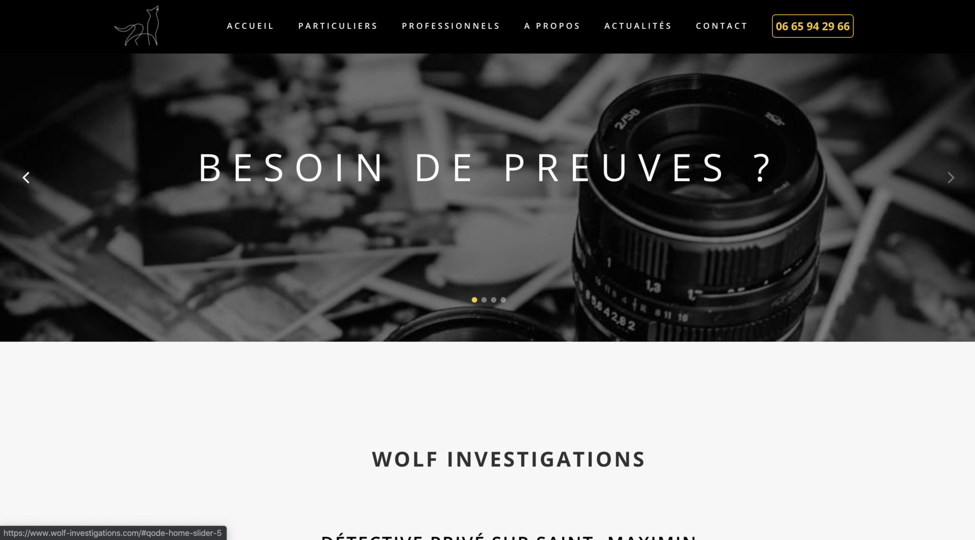 Wolf Investigation - Création site internet